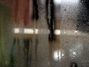 Relative Humidity and How it Affects Your Home