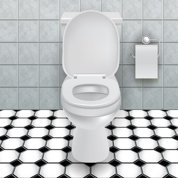 how-to-choose-a-new-toilet