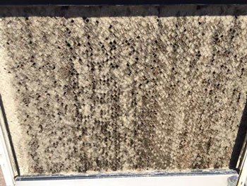How To Clean Swamp Cooler Pads Step By Step With Pictures Tlc Plumbing