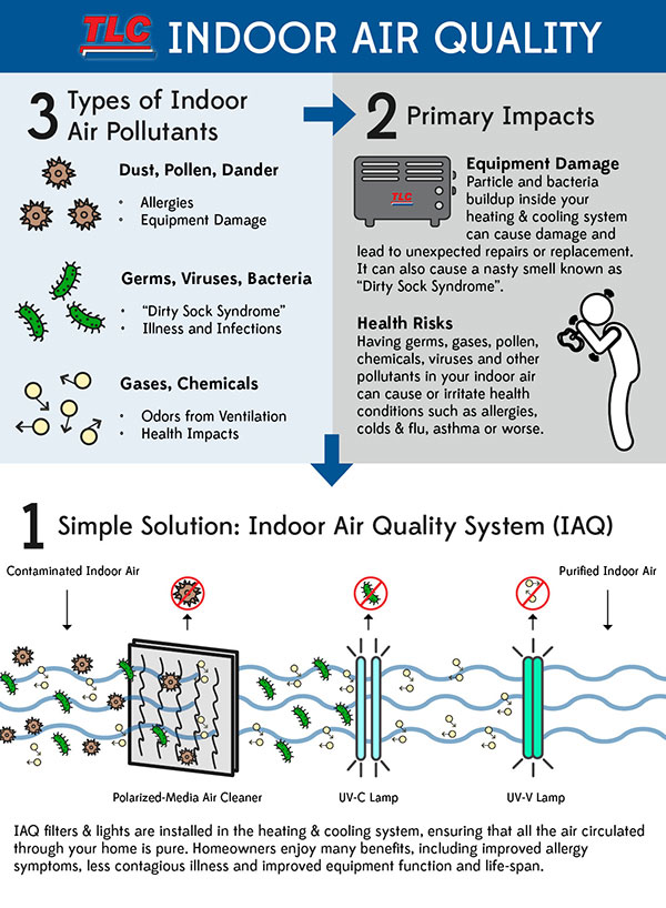 Indoor-Air-Quality-Infographic-On-Types-of-Air-Pollutants